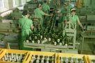 Bier. Braukunst und 500 Jahre deutsches Reinheitsgebot